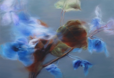 Swaying Flowers, 53x73cm, Oil on Canvas, 2016.jpg